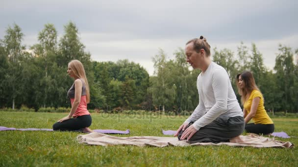 Jóga v parku - skupina sportovců provádět cvičení flexibility