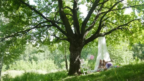 Family having picnic in park - father, mother and daughter under big tree