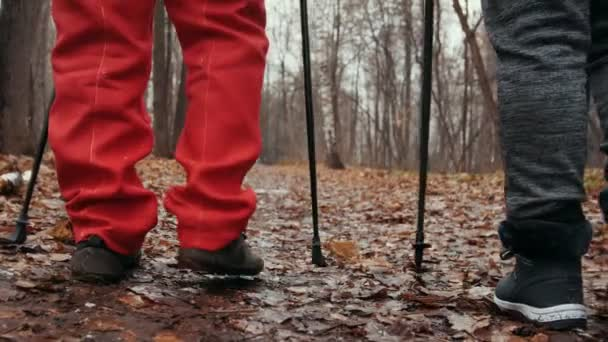 Nordic walking in autumn park - senior ladies have training outdoor