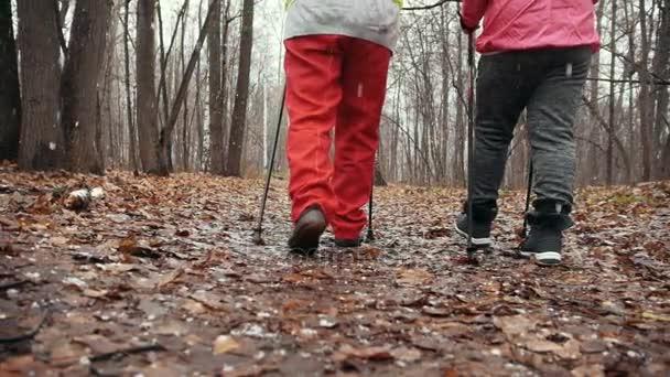 Nordic Walking im Herbstpark - zwei Seniorinnen trainieren im Freien in Zeitlupe