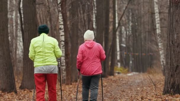 Nordic walking for elderly women outdoor - two senior ladies have training outdoor - rear view
