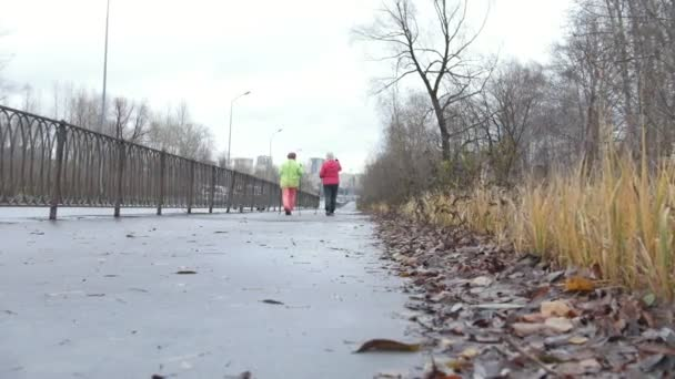 Nordic walking pro starší ženy, venkovní - dvě starší dámy mají trénink v přírodě, zadní pohled