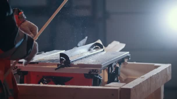 Dělník truhlářské řezání dřevěné prkno s nebezpečnými kruhové elektrické viděl, pohled zezadu