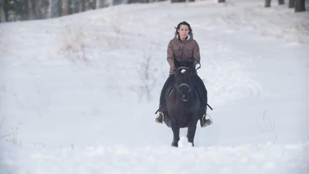 Krásná dlouhosrstá ženské jezdec divoké a rychle na koni černý kůň sněhem, pes běží nedaleké, pomalý pohyb