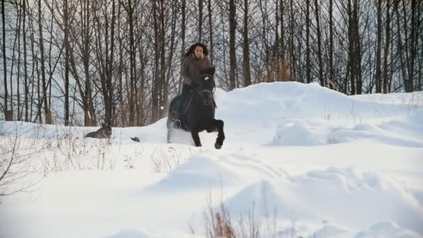 Krásná dlouhosrstá ženy jezdec na černém koni sněhem v poli, psů, kteří nedaleko