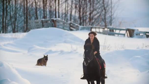 Atraktivní dlouhosrstá ženy jezdec na černém koni přes závěje na venkově se psem