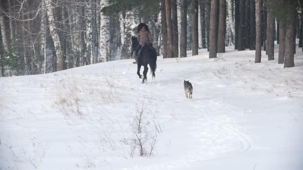 Dlouhovlasého ženy jezdec rychle na černém koni sněhem, pes běží nedaleké
