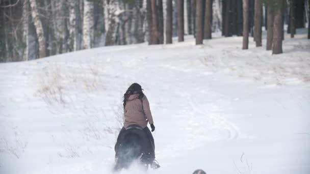 Ženy jezdec na černém koni sněhem, pes běží v okolí, pomalý pohyb