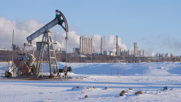 Large petrochemical plant with pump for crude oil production