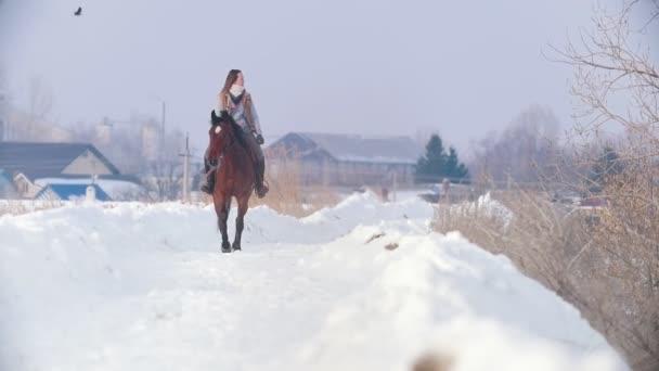 Lovas sport - lovas nő-lovon, séta a havas szabadtéri és keres a madár az ég