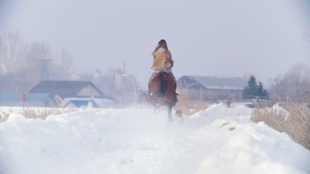 Ženy jezdec na černém koni sněhem s pes, pomalý pohyb, pohled zezadu
