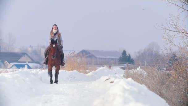 Krásná dlouhosrstá žena hnědé koni přes hluboké závěje forst