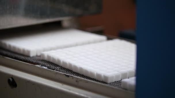 Výroba cukru na dopravní pás v cukrovaru
