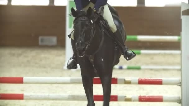 Equestrian rider on the ginger horse galloping at show jumping competition