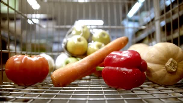 Shopping trolley - choosing items in the grocery shop - buying vegetables and fruits