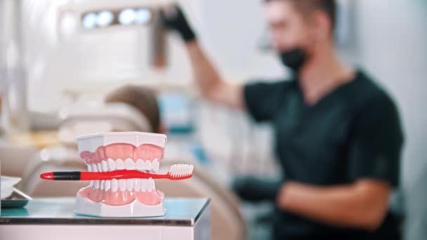 Plastový model čelistí se zubním kartáčkem - muž zubař dělá svou práci na pozadí