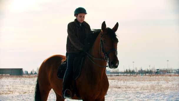 Lovaglás - fiatal és gyönyörű nő lovas ül lovagolni
