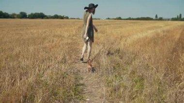 Gyönyörű fiatal csípő nő séta vicces chihuahua kutya szabadban mező