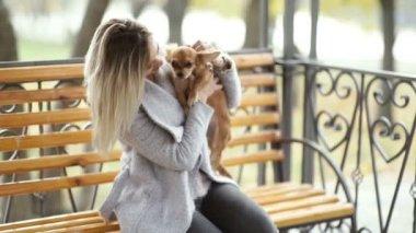 fiatal gyönyörű nő vele vicces Hosszúszőrű Csivava kutya Park. Őszi háttér
