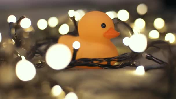 Close-up shot of rubber duck on background of christmas garland on a playd. Home decor