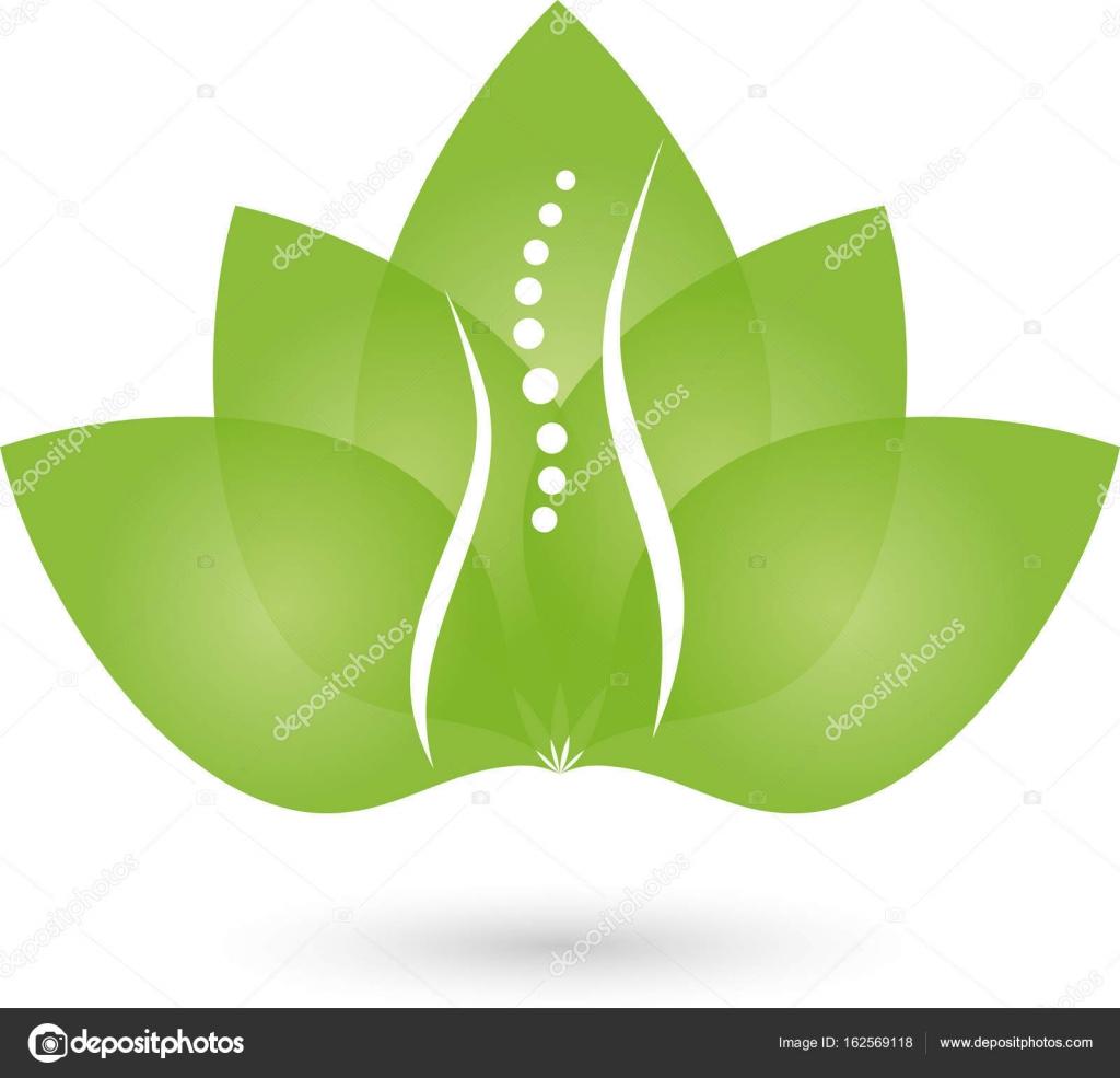 Person Wirbelsäule Und Blätter Orthopädie Und Frauen Arzt Logo