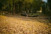 Szép szőke ül a fából készült régi hajó, ami a földön meghatározott sárga bukott őszi levelek