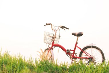 Vintage of bicycle on grass field, selective and soft focus