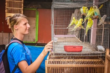 Girl looking at yellow parrots for sale
