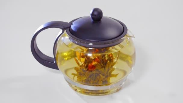Zelený čínský čaj poupě kvetoucí ve skleněné konvici