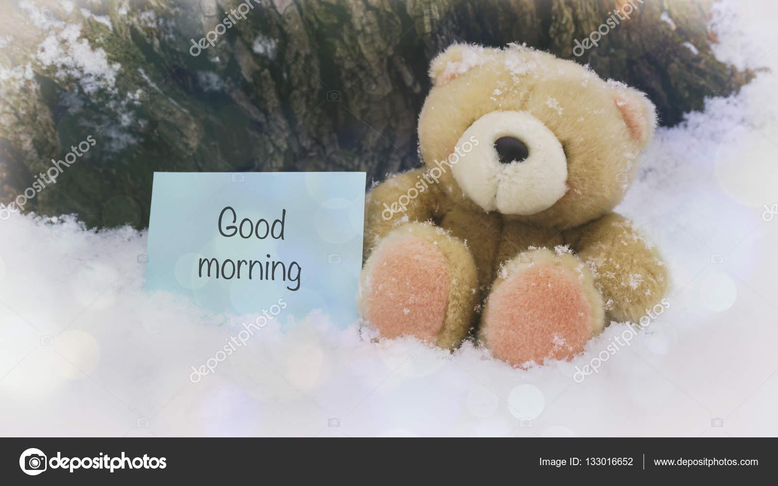 Ein Teddybär Auf Weißen Schnee Worte Auf Papier Stockfoto