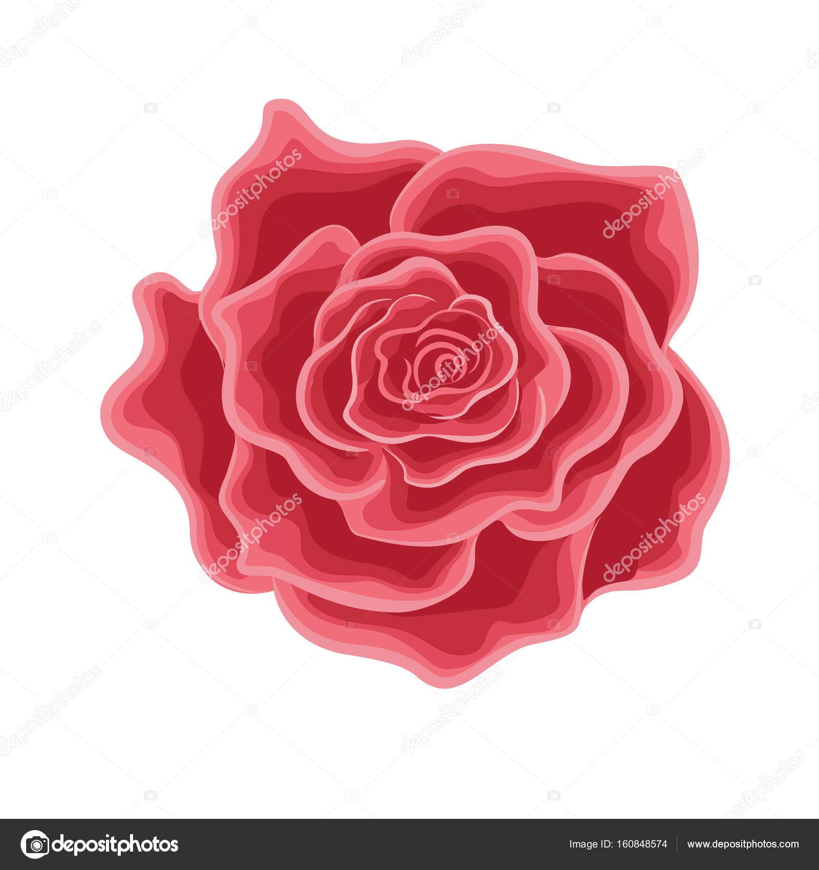 Une Fleur D Une Rose Rouge Dans Le Style De Dessin Anime Image