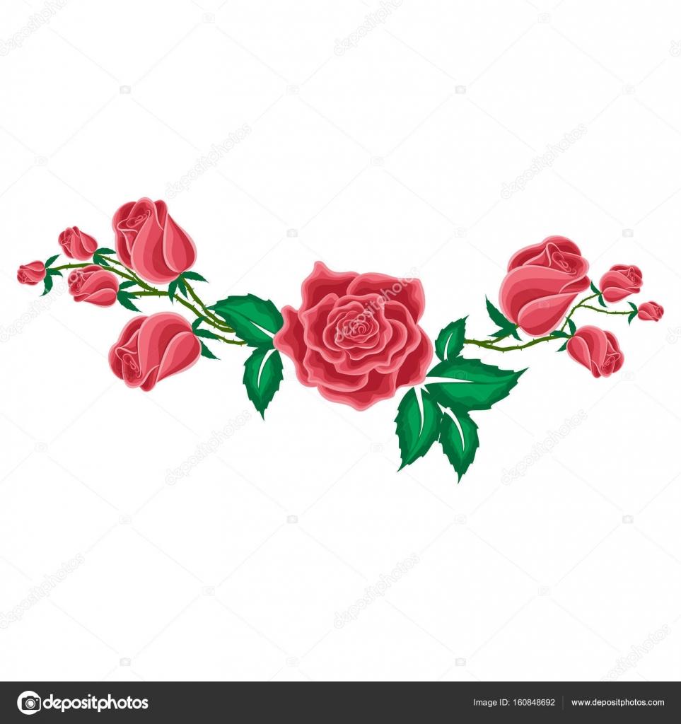 Rote Rose Und Knospen Der Rosen Im Cartoon Stil Stockvektor