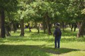 Aranyos gyermek fiú a séta a hegyekben kis utat hátizsák. Gyalogos gyerek