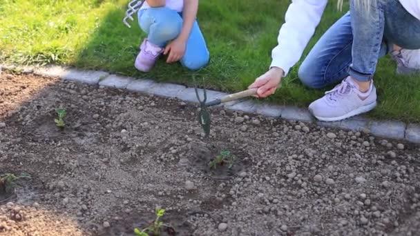 Matka a dcera zasadili rostlinu do země.