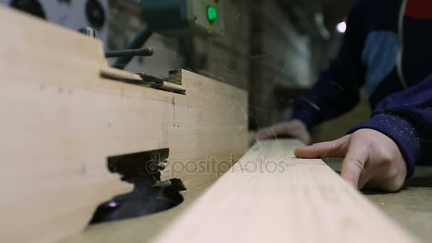 Carpenter engaged in processing wood in workshop