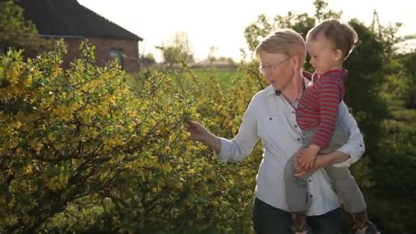 Babička a batole v jarní zahradě