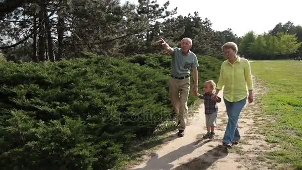 Totyogó fiú nagyszülei Park séta