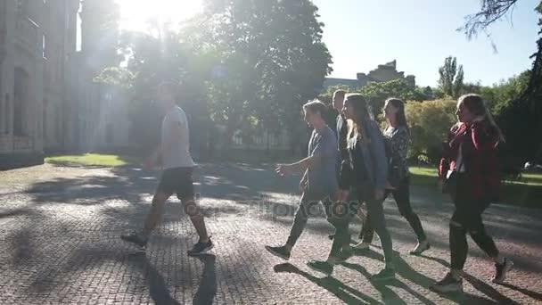 Skupina studentů vstupující univerzitě budovy