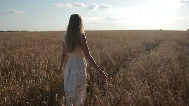 Šťastná žena chůze na zlaté pšeničné pole
