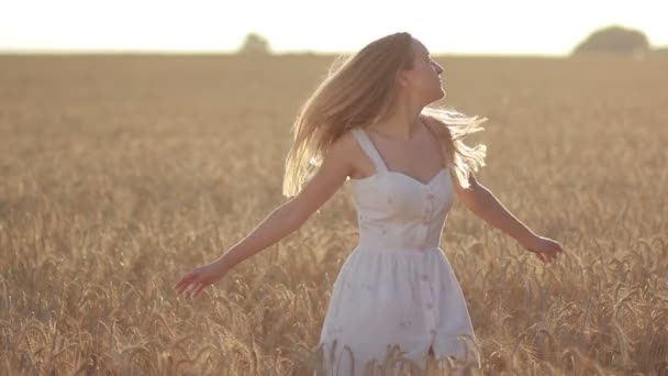 Lovely woman with flying hair in field at sunset