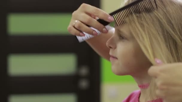 Hairdresser combing clients hair with comb