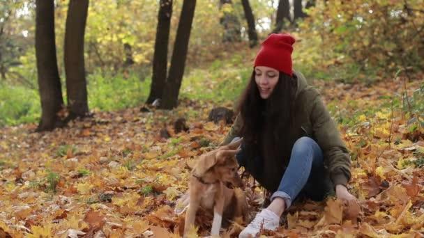 Bokovky žena a pes hraje s spadaného listí