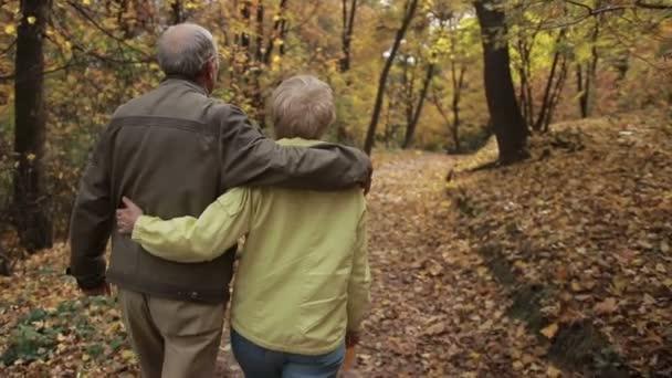 Idős házaspár szerelmes ősszel átfogó