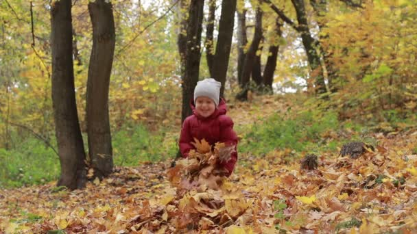 Toddler boy playing with autumn leaves in park