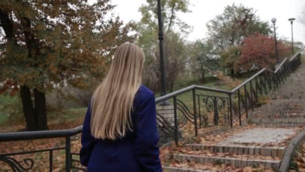 Ohromující žena stoupání schodiště na podzim park
