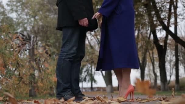 Pár v lásce všeobjímající v podzimní park