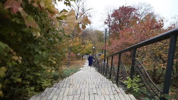 Okouzlující žena, chůzi po schodech v podzim