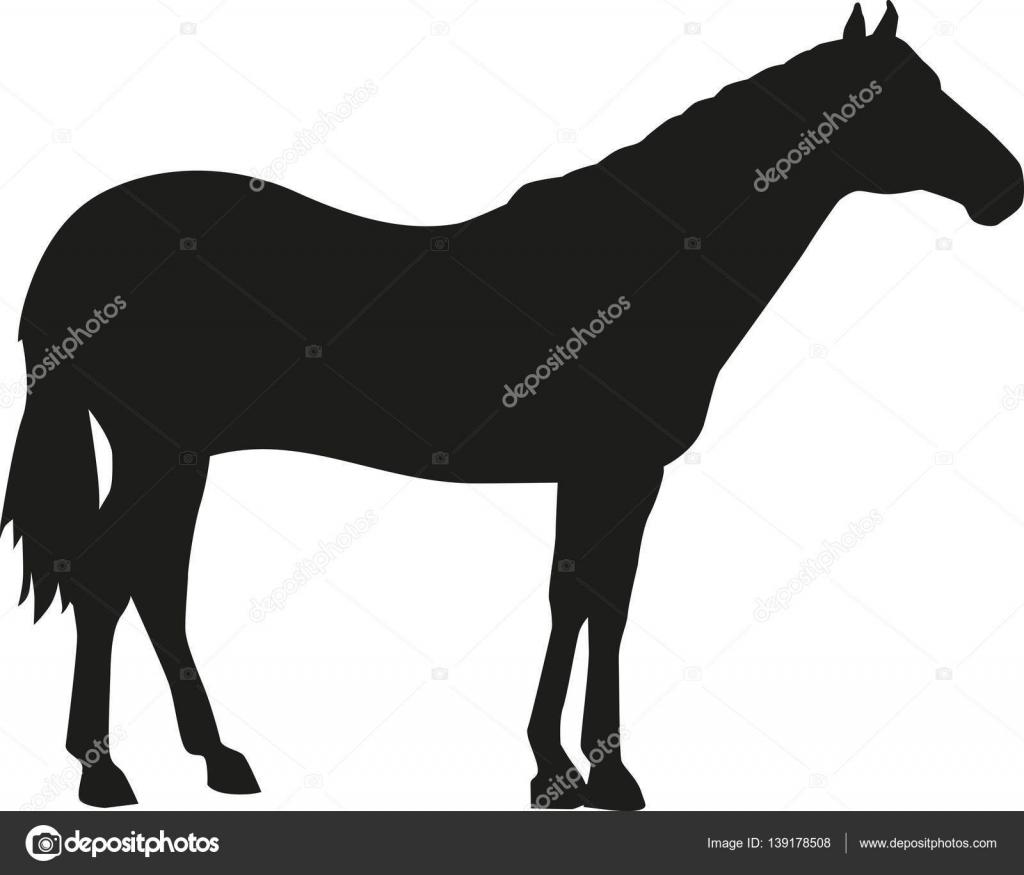 Silueta de caballo cuarto de milla — Archivo Imágenes Vectoriales ...