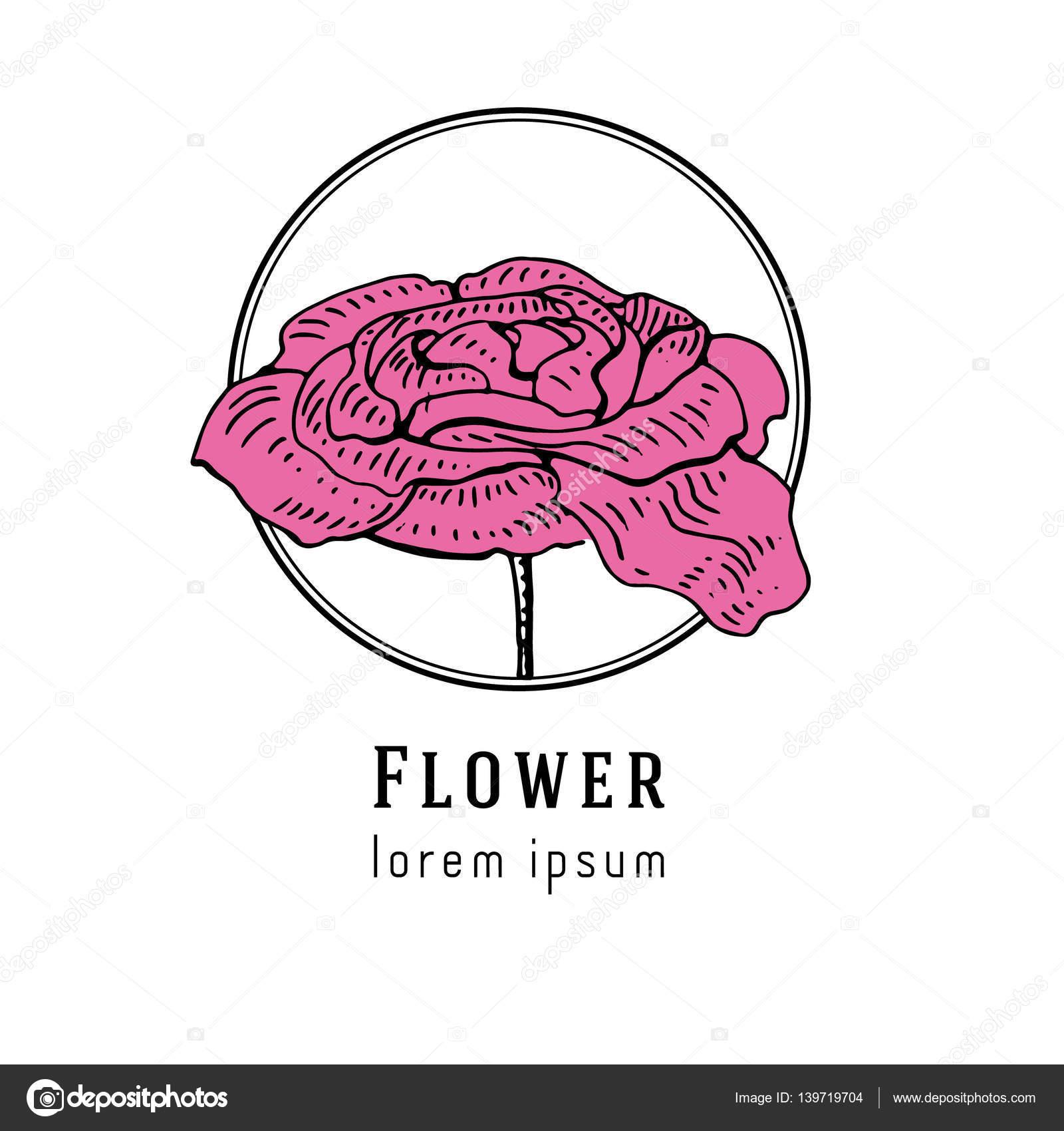 Peony Flower Logo Hand Drawn Peony Flower Logo Stock Vector C Chipurkolubov Rambler Ru 139719704