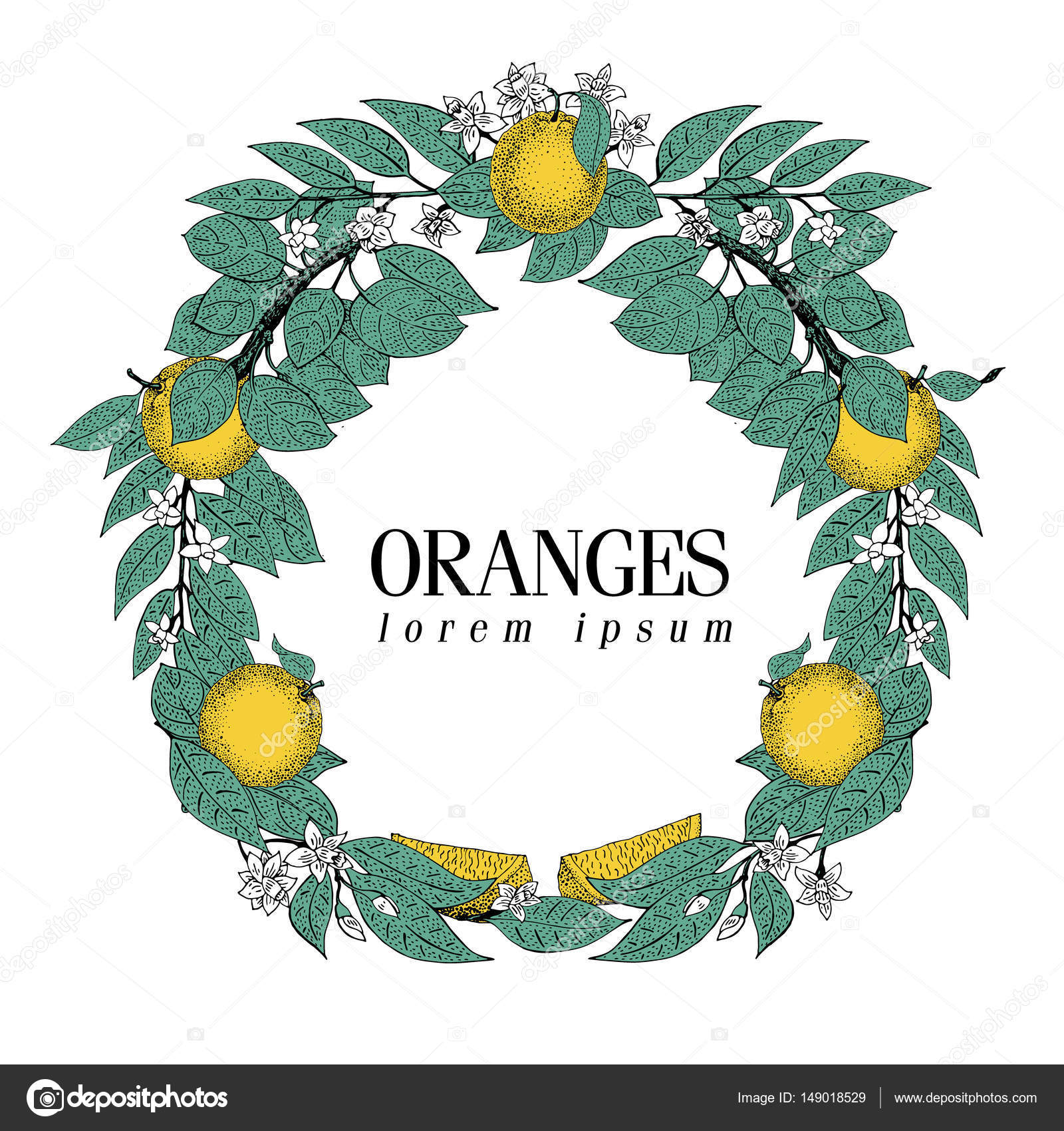 round wreath of leaves and orange fruit vector hand drawn frame